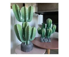 Cactus en bois décors