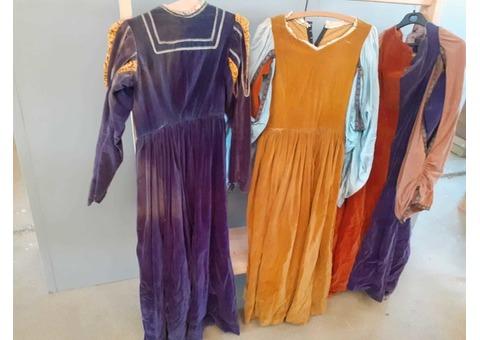 Robes Shakespeare velours