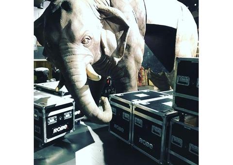 elephant taille réelle  résine